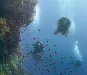 PADI deep divers on a wall