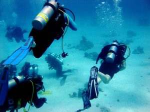PADI Instructor leads the dive