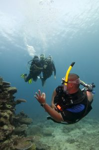 Dive Master leading the dive