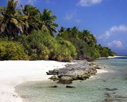 Dive overseas with Dive Odyssea and experience laid back palm beaches