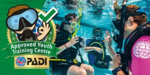 School expeditions and diving